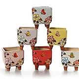 수제화분 사각꽃잔치(6color)|