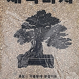 ♥세척마사토 ♥중립 소포장 약2kg|