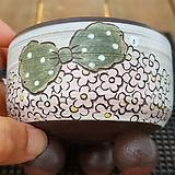 고급수제화분 5|Handmade Flower pot