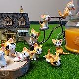 가든데코 (노랑 고양이9종)|