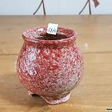 수제화분4865 Handmade Flower pot