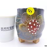 수제화분(반값할인) 511 Handmade Flower pot