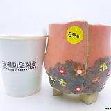 수제화분(반값할인) 540 Handmade Flower pot
