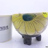 수제화분(반값할인) 637|Handmade Flower pot