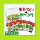 [소]새싹재배기 새싹씨앗6종 체험학습 자연학습행복한꽃그릇 행복상회  