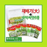 [대]새싹재배기 새싹씨앗6종 체험학습 자연학습 행복한꽃그릇 행복상회 