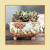 이오스[211~221] 다육이화분 인테리어화분 수제화분 행복한꽃그릇 행복상회 Handmade Flower pot