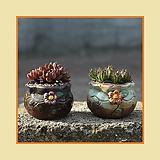 이오스[200~210] 다육이화분 인테리어화분 수제화분 행복한꽃그릇 행복상회