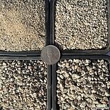 강모래 입자선택 1kg(모래가루,세립,소립,중립)|