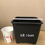 사각플분 6호(14.5cm×14.5cm×12.5cm)