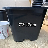 사각플분 7호(17cm×17cm×15cm)
