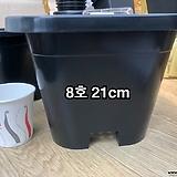 사각플분 8호(21cm×21cm×15.5cm)|