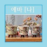 에바[나] 다육이화분 인테리어화분 수제화분 행복상회 행복한꽃그릇