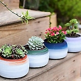 수제화분 투톤1 (4color)|Handmade Flower pot