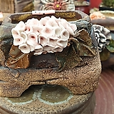 란 수제화분 세일 (LAN) 꽃코사지 No.0031 [premium handmade] - 다육화분 Handmade Flower pot