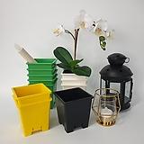 사각플분2호검정-백색-노랑-녹색,컬러플라스틱화분,플분