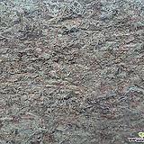 수태-최고급특대 풍란류,난종류 토피어리|