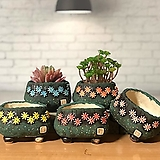 국산수제화분 도향100(5color)|Handmade Flower pot