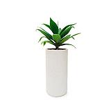 아가베 시멘트완성분 대품 大 카페 식물 인테리어 화분|