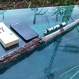 D.I.Y원예자재 연수목(감태나무-비건조100cm)AP-4435|