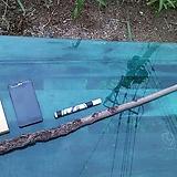 D.I.Y원예자재 연수목(감태나무-비건조100cm)AP-4436|
