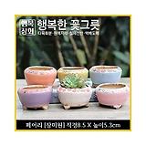 페어리[장미원] 다육이화분 인테리어화분 수제화분 행복상회 행복한꽃그릇|