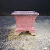 수제화분(미니환분)121|Handmade Flower pot