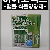 하이포넥스 앰플, 식물영양제, HYPONEX, 영양제, 보호제,비료|