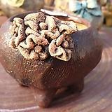 란 수제화분 세일 (LAN) 빈티지 작은사이즈 No.114 [premium handmade] - 다육화분 Handmade Flower pot