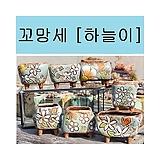 아쿠아마린철화/묵은둥이/914P5