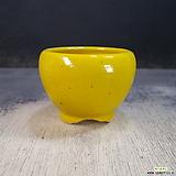 수제화분(백광분)12|Handmade Flower pot