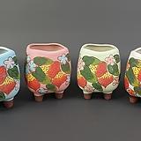 수제화분 한딸기 다육이화분 Handmade Flower pot