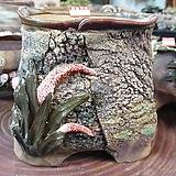 란 수제화분 세일 (LAN) 꽃코사지 No. 23 [premium handmade] - 다육화분 Handmade Flower pot