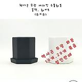 130 헥사곤 무광 세라믹 소품화분 블랙,화이트 8×8 묶음판매|