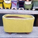 노랑색 직사각 수제화분 다육이화분|Handmade Flower pot