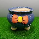 꽃이다공방 명품 수제화분 #3879 Handmade Flower pot