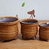 수제화분한세트6218|Handmade Flower pot