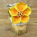 소향 수제화분(중대사이즈/색유약분)-2|Handmade Flower pot