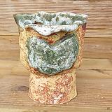 소향 수제화분(대사이즈/색유약분)-6|Handmade Flower pot