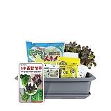 월드가드닝 길러먹는유기농채소-5종혼합상추텃밭세트/배양토/마사토/씨앗/식물이름표/식물애보약/|