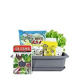 월드가드닝 길러먹는유기농채소-10종쌈채소텃밭세트/배양토/마사토/씨앗/식물이름표/식물애보약|