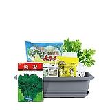 월드가드닝 길러먹는유기농채소-쑥갓텃밭세트9종/배양토/마사토/씨앗/식물이름표/식물애보약|