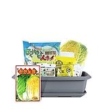 월드가드닝 길러먹는유기농채소-배추텃밭세트9종/배양토/마사토/씨앗/식물이름표/식물애보약|
