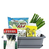 월드가드닝 길러먹는유기농채소-대파텃밭세트9종/배양토/마사토/씨앗/식물이름표/식물애보약|