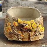 녹우수제화분|Handmade Flower pot