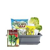 월드가드닝 길러먹는유기농채소-엇갈이배추텃밭세트/배양토/마사토/씨앗/식물이름표/식물애보약|