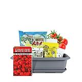 월드가드닝 길러먹는유기농채소-꼬마토마토텃밭세트/배양토/마사토/씨앗/식물이름표/식물애보약|