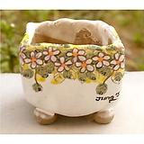국산수제화분(정화분)#34698 Handmade Flower pot