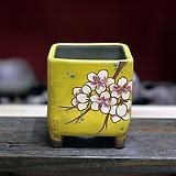 꽃가지 노랑사각분|