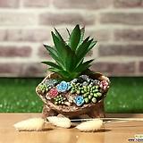 수제화분 꽃밭에서|Handmade Flower pot